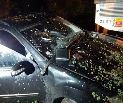 Policisté pronásledovali Mercedes, řidič narazil do stromu