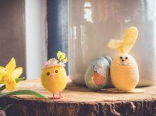 yellow bird plush toy on brown wood