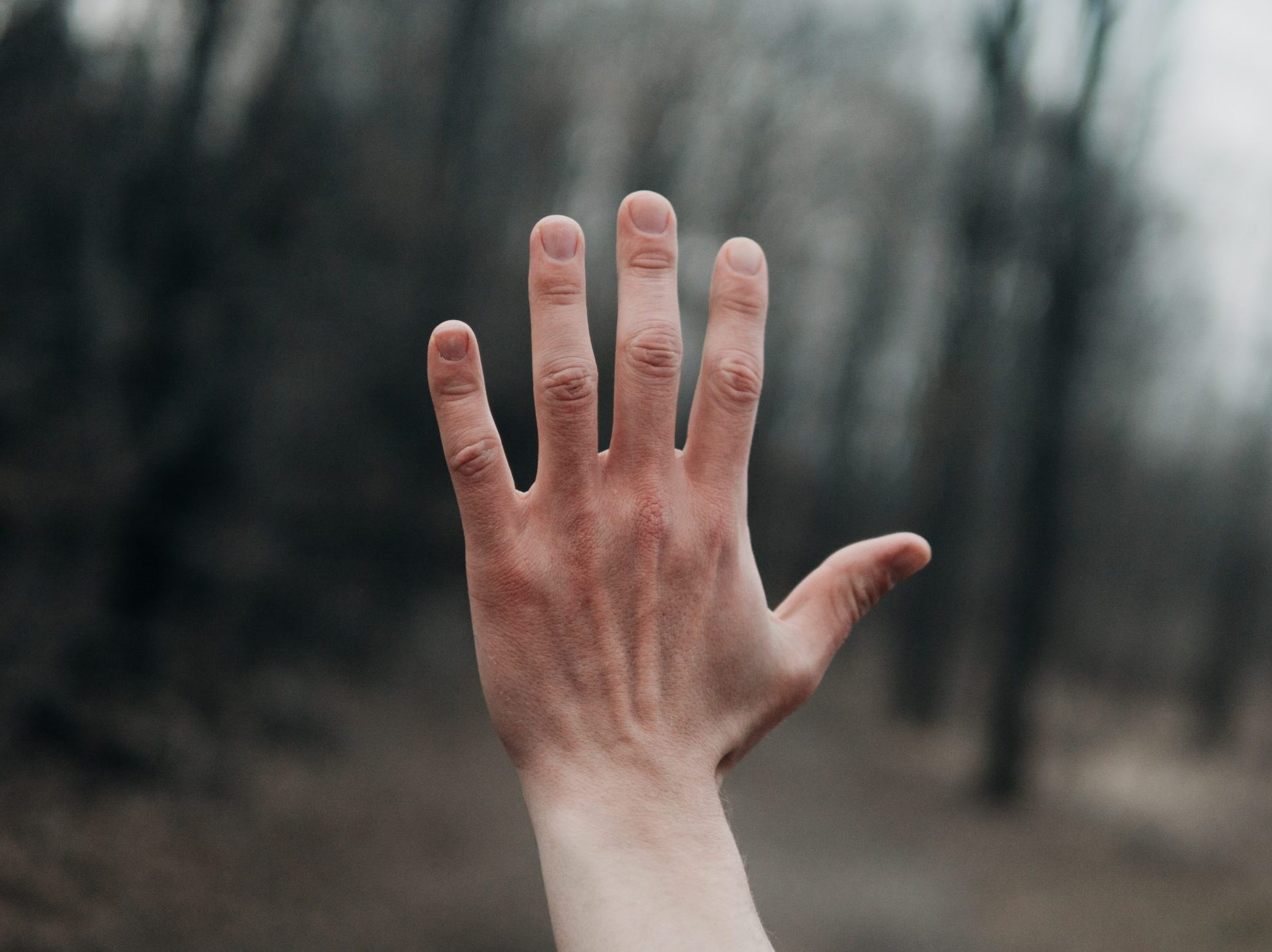 shallow focus photography of person's left hand outside